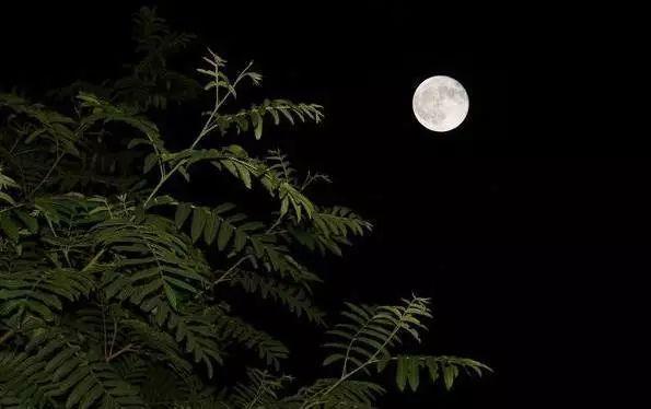 从白昼到黑夜,爱上仓山的24小时……