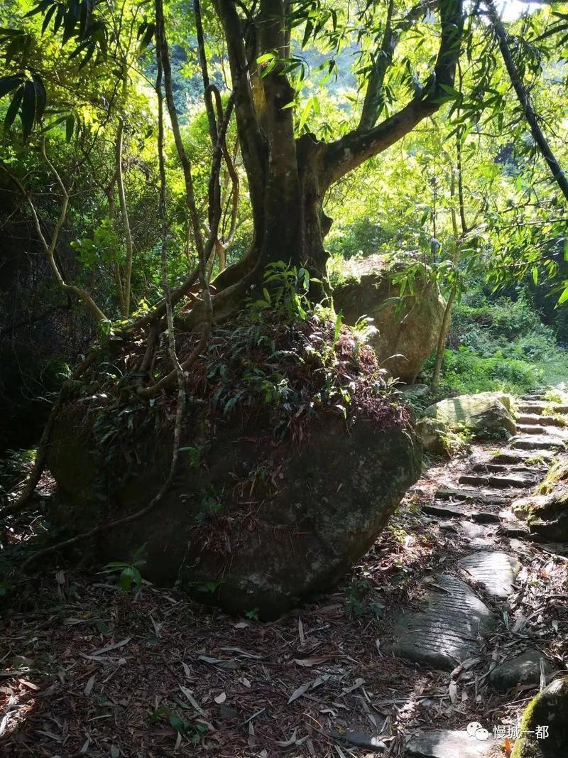 """福清有条悬崖上的""""挂壁公路"""" ,景色绝美!"""