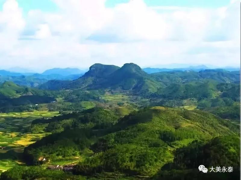 """点赞!永泰县被授予""""全国绿化模范单位""""荣誉称号"""