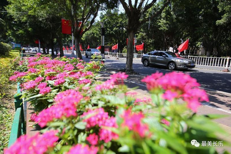 """红旗飘飘,百花齐放!长乐街头处处""""中国红"""""""