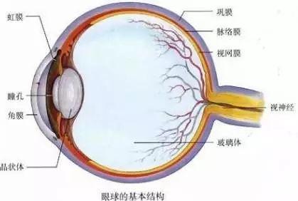 福州男子右眼被砸傷!眼科醫生竟讓他戴美瞳治療