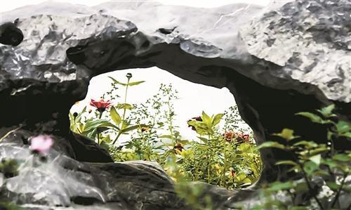 大自然的馈赠,闽江河口国家湿地公园美如画!