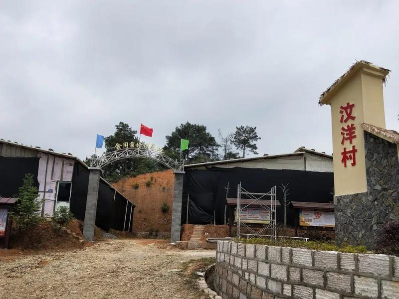 闽清下祝乡汶洋村:小小食用菌 铺就村民致富路