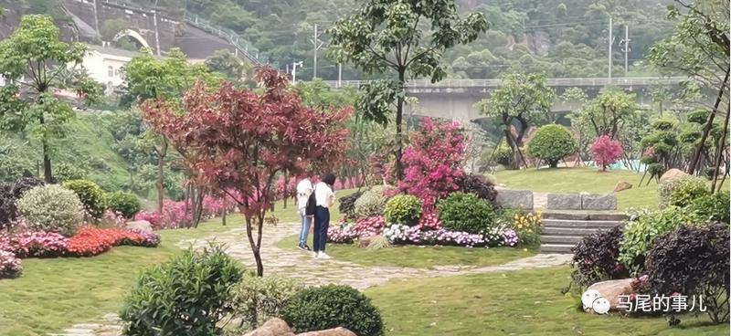 一个月荒地变绿地,面积1.3万平方米,就在马尾